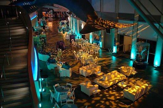 Aquarium Of The Pacific California Wedding Day
