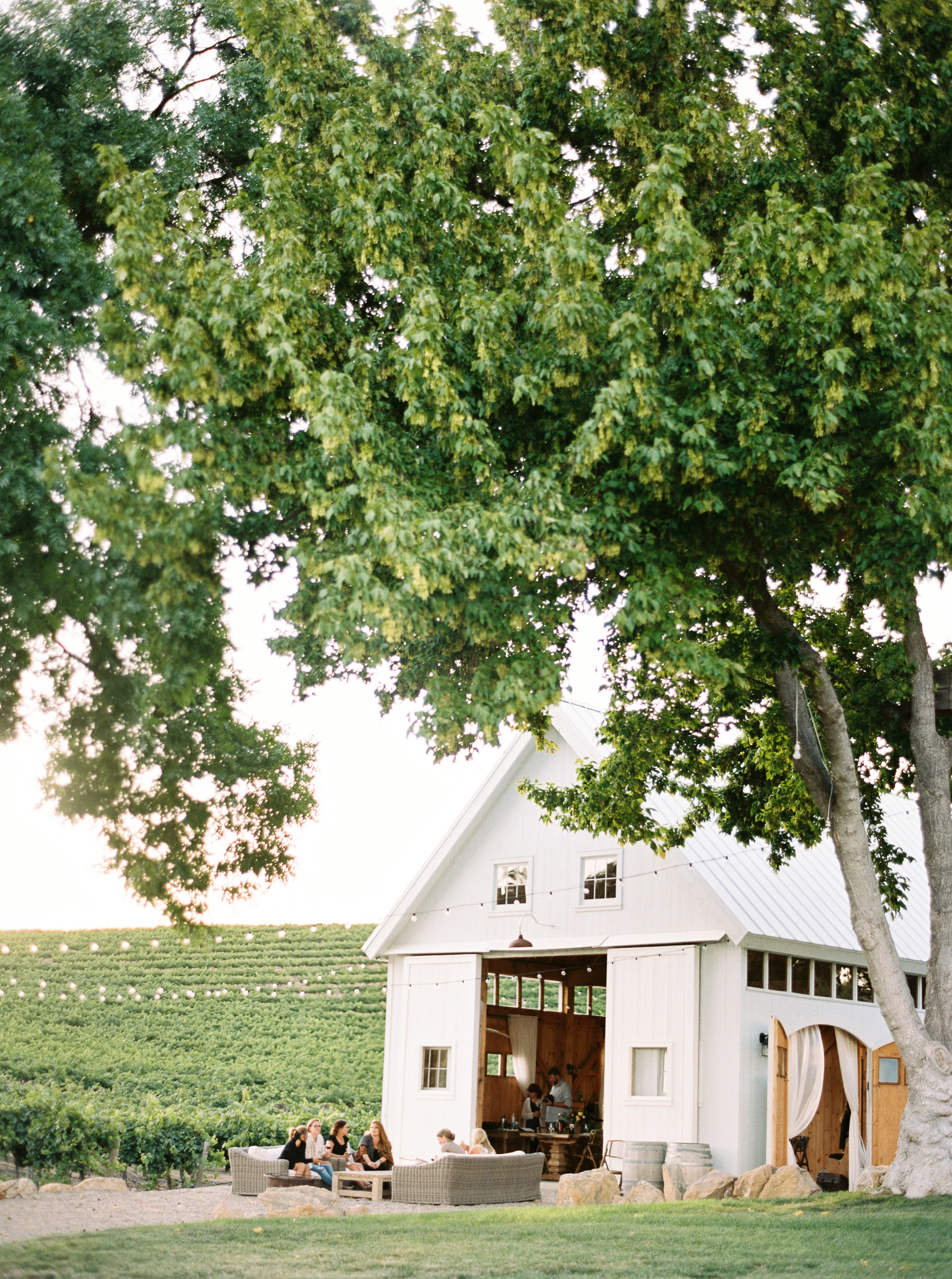 Hammersky Vineyards California Wedding Day